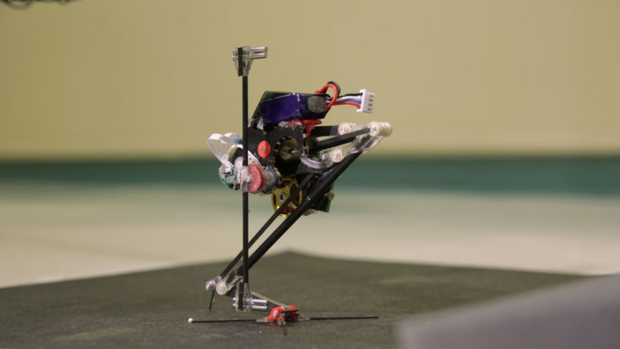 Robot Salto on skinny leg