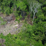 Amazon tribe captured by Drone first time in history